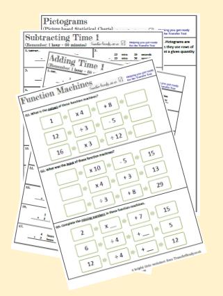 Printed pack of Transfer Test Worksheets